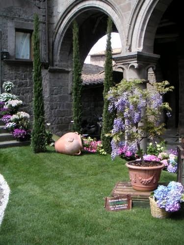 S.Pellegrino in fiore - Viterbo (4279 clic)