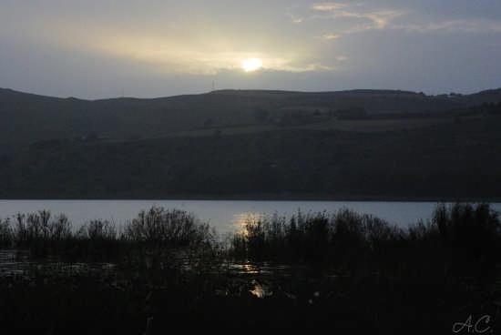 riserva naturale di Pergusa EN (3423 clic)