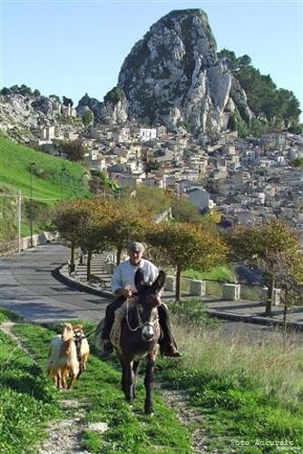 Caltabellotta (4702 clic)