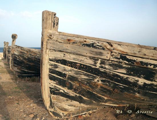 La tonnara.barche - Bonagia (1416 clic)