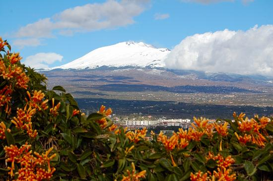 Etna visto da Paternò (2511 clic)