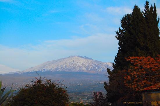 Veduta del Vulcano Etna - Regalbuto (1899 clic)