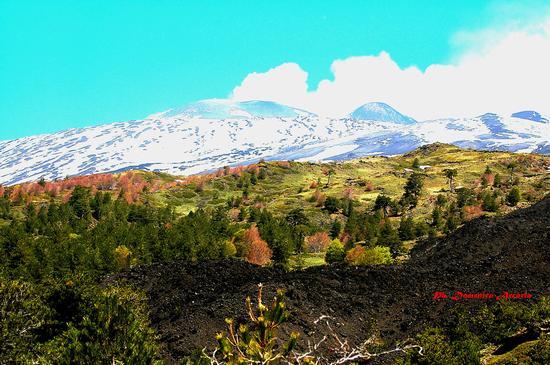Etna - ETNA - inserita il 03-Mar-14