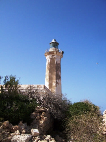 Lampedusa . Il faro (4060 clic)