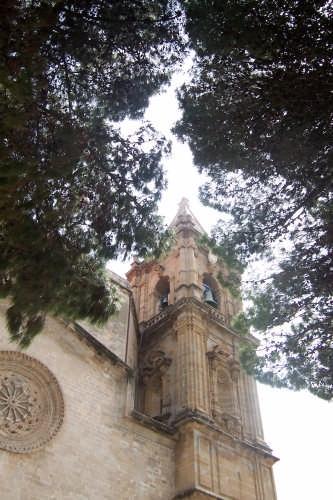 Cattedrale di trapani (3192 clic)