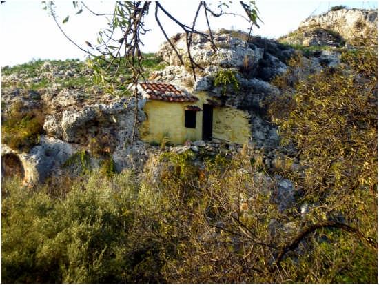 Giallo nella roccia - Augusta (3155 clic)