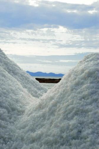 Raccolta del sale - Marsala (3066 clic)
