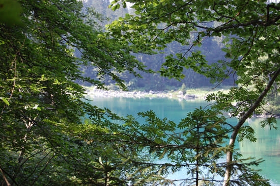 Lago Superiore Fusine (2734 clic)