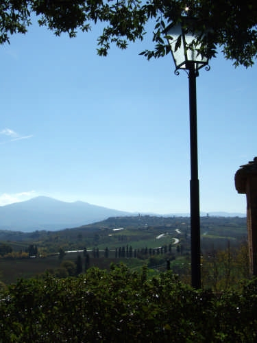 Strada tra Montepulciano e Pienza (2321 clic)