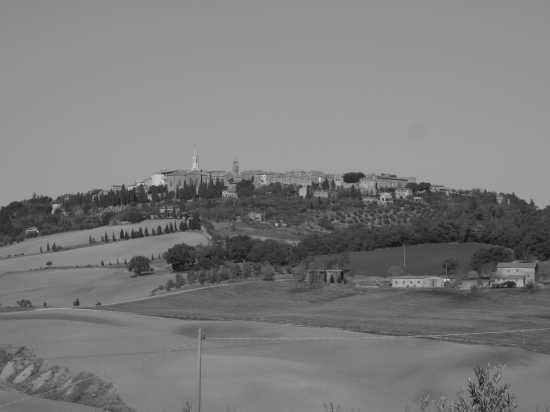 pienza panorama (1845 clic)