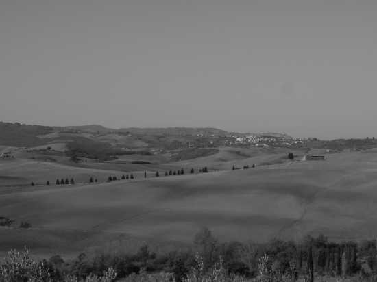 pienza panorama (2578 clic)