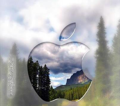 La famosa mela - Chieti (1578 clic)