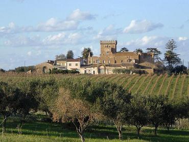 La cosiddetta villa della Marchesa - Partinico (5906 clic)