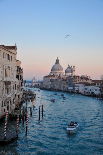 Venezia (593 clic)