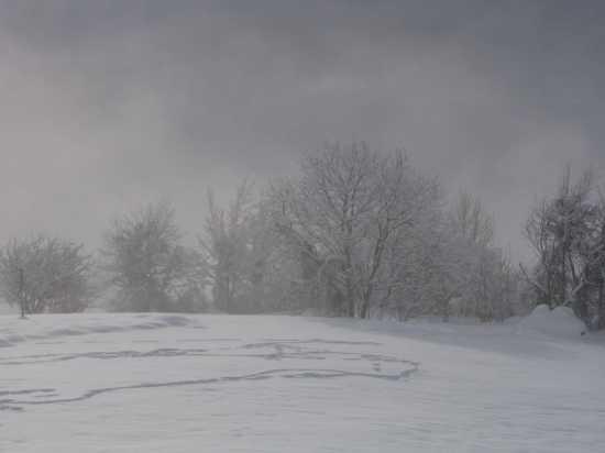 Magico inverno 2 - Quart (2147 clic)