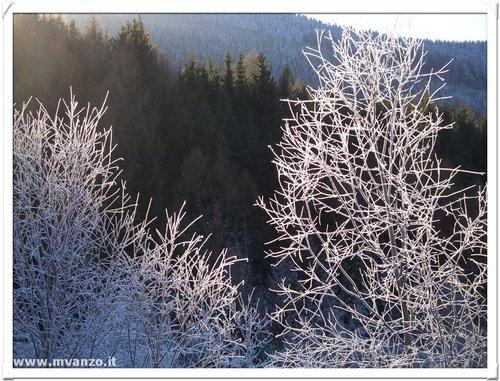 Gelo - Tesero (3134 clic)