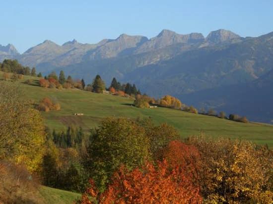 Paesaggio autunnale, sullo sfondo il Lagorai - Varena (4269 clic)