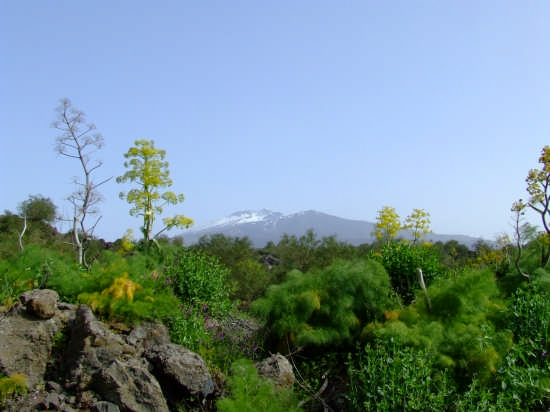 Etna - Nicolosi (3562 clic)