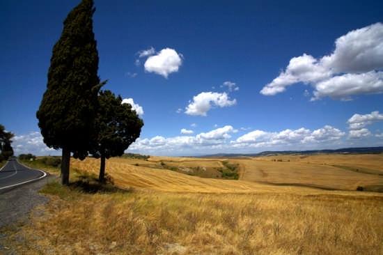 Val d'Orcia - Siena (4355 clic)