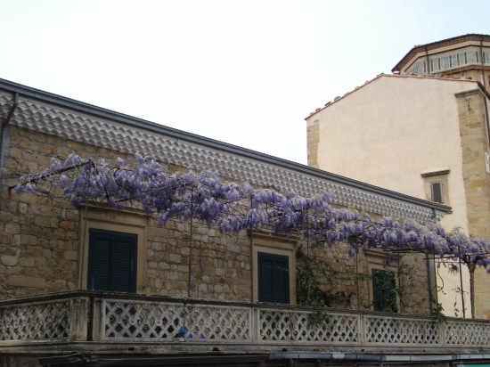 Terrazza di Palazzo Gallegra (1722).  - Mistretta (4043 clic)