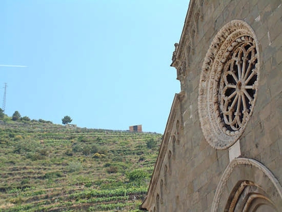Rosone Chiesa di Manarola (3061 clic)