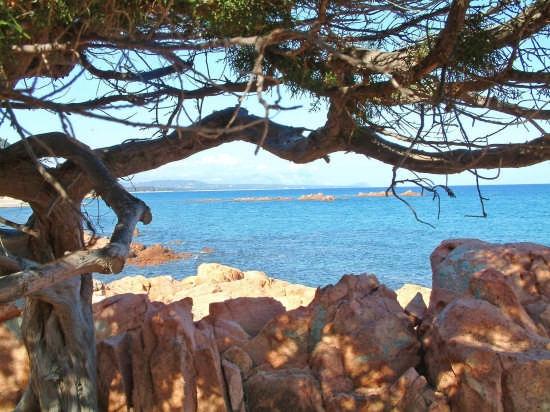 cala surya - Cagliari (7429 clic)