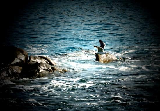 volare si può - Villasimius (5621 clic)