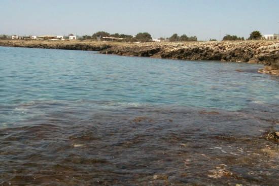 Tratto di costa a Nord di Torre San Giovanni - Ugento (2356 clic)