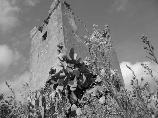 torre antica - Bagheria (4041 clic)