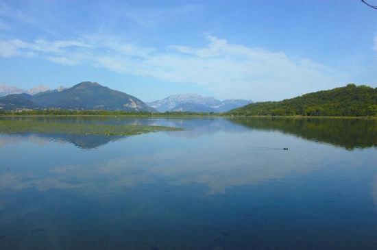 lago di Alserio (Co) - Como (2923 clic)
