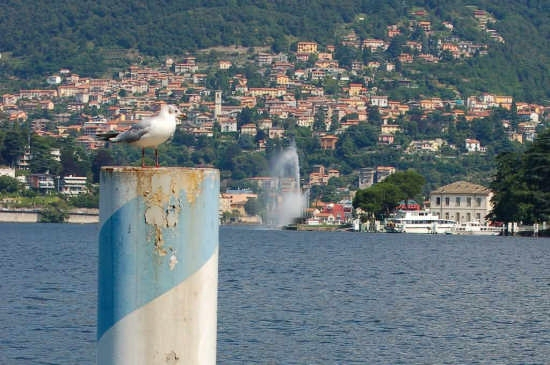 Lago di Como (1809 clic)