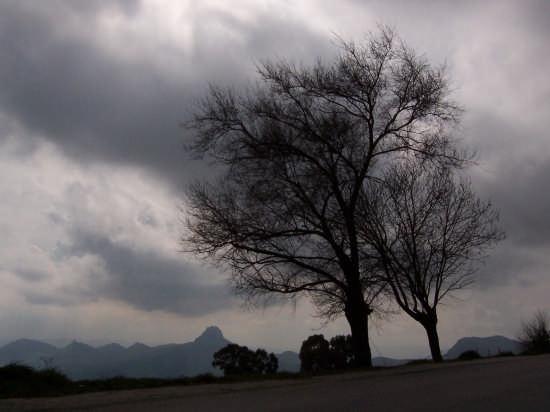 paesaggio - Mussomeli (2524 clic)