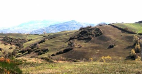 Campagna Monte Labbro - Arcidosso (GR.) (1624 clic)