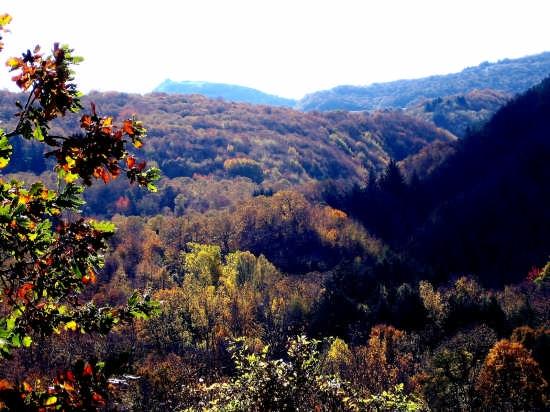 Veduta panoramica campagna Monte Labbro - Arcidosso - GR. (1808 clic)