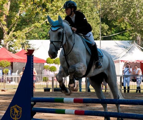 Villanova di S.Daniele Alleva cavalli 2011 - San daniele del friuli (2671 clic)