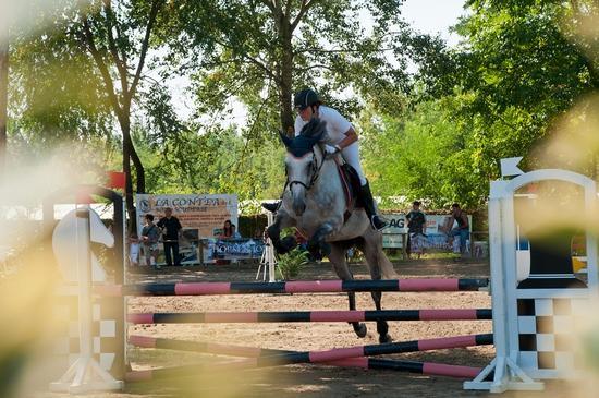 Villanova di S.Daniele Alleva cavalli 2011 - SAN DANIELE DEL FRIULI - inserita il 05-Sep-11