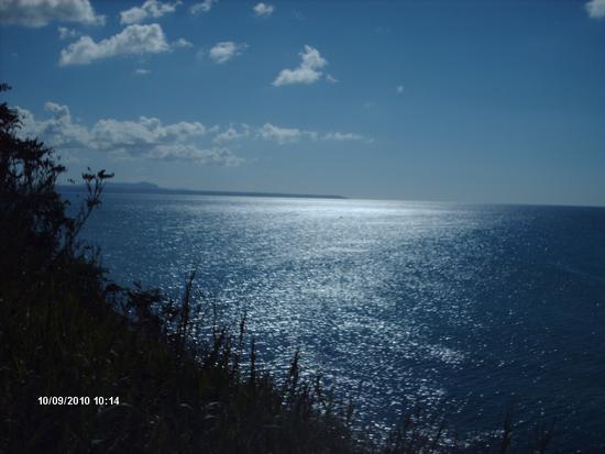 Selinunte:il mare dall'area archeologica di Selinunte (2862 clic)