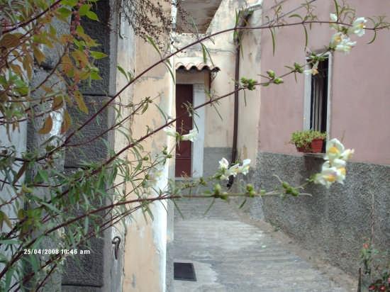 vicolo - Vizzini (4079 clic)