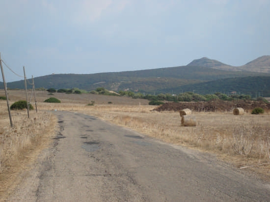 stradella di campagna... - Sant'antioco (2766 clic)