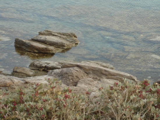 scogli sopra e sott'acqua :-) - Sant'antioco (3471 clic)