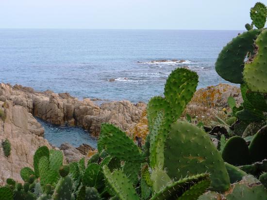 Cala Liberotto - Orosei (2656 clic)