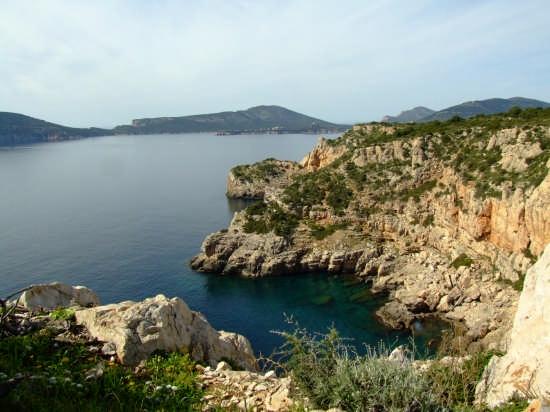 Punta del Giglio - ALGHERO - inserita il 18-Mar-08