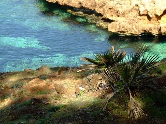 Punta del Giglio - Alghero (3497 clic)