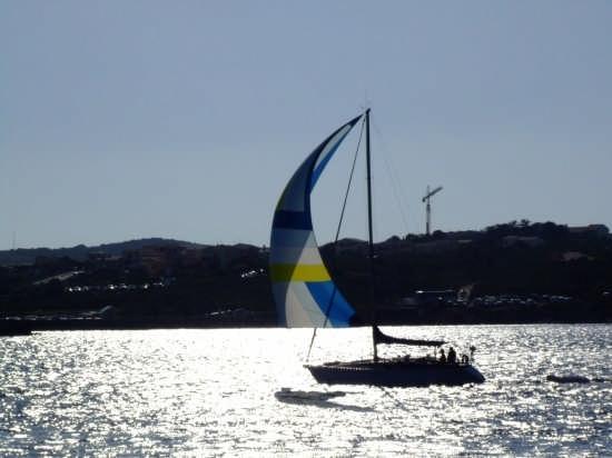 Tramonto - rientro in porto - Stintino (4118 clic)
