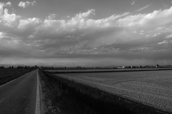 campagna solitaria - Casalino (2324 clic)