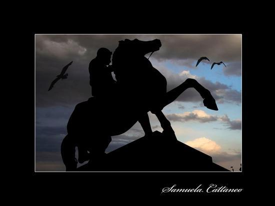 silhouette - Torino (2283 clic)