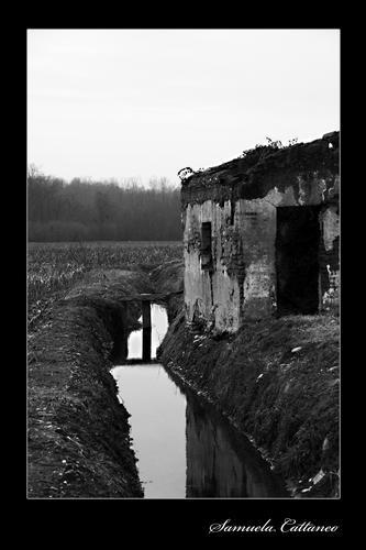 il piccolo rudere in campagna - Galliate (2751 clic)