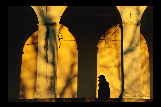 luci e ombre (1074 clic)