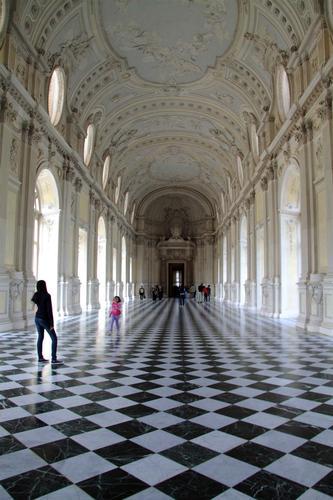 reggia di Venaria - Torino (2395 clic)