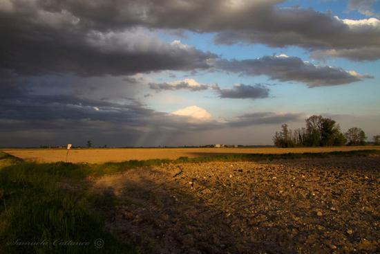 il canto muto delle nuvole - Casalino (2200 clic)
